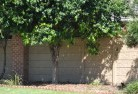 Almonds Barrier wall fencing 5