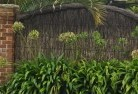 Almonds Thatched fencing 5